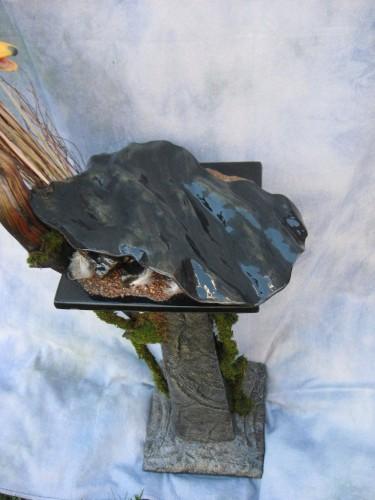 Mallard duck mount (base); Aberdeen, South Dakota