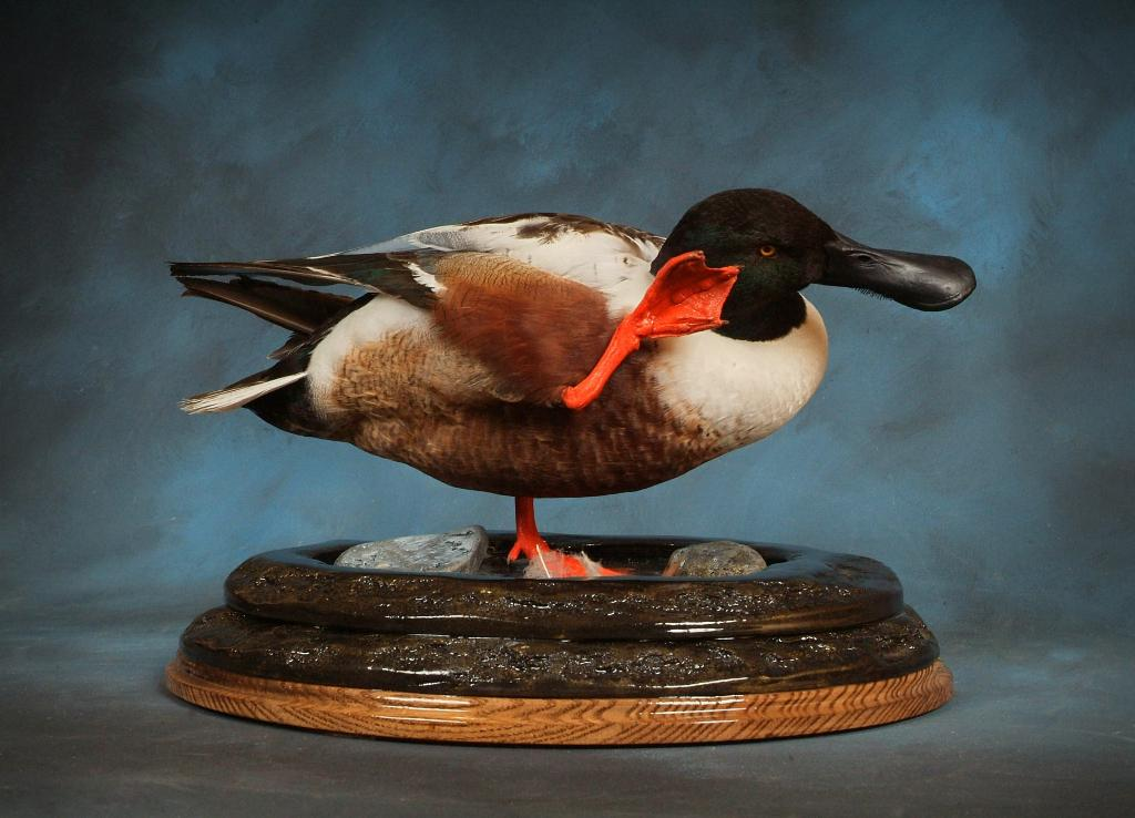 wood and mallard ducks Find great deals on ebay for wood mallard duck and loon decor shop with confidence.