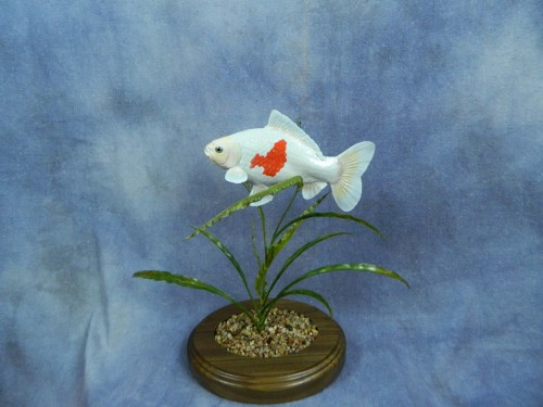 Goldfish mount; Aberdeen, South Dakota