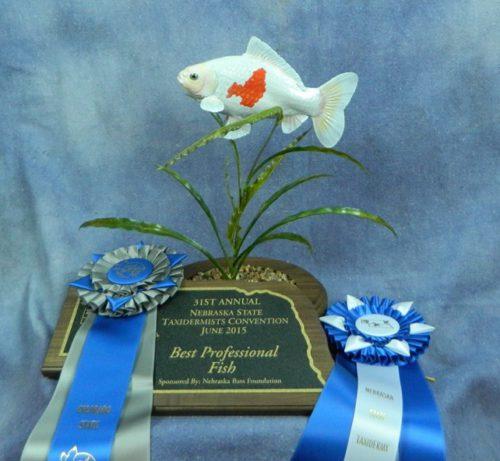 Best professional fish mount in Nebraska, 2015