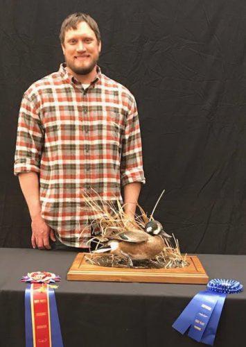 Northern Shoveler X American Wigeon Hybrid Mount; South Dakota Taxidermy Competition Awards