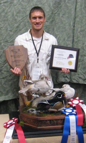 Wood Duck Trio Mount; Nebraska Award Winner